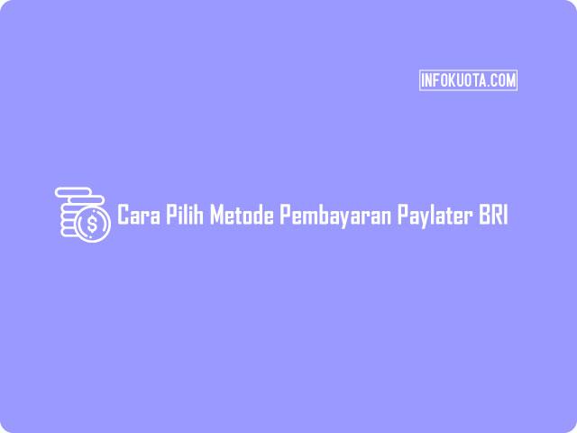 Cara Pilih Metode Pembayaran Paylater Lewat ATM BRI